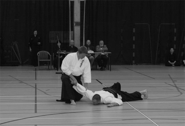 Ju jitsu tradizionale
