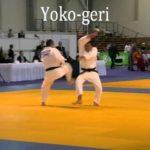 Yoko Geri